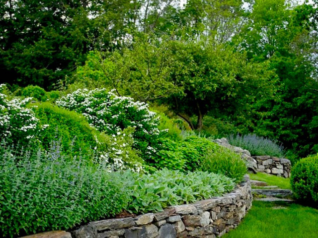 Perennial Gardens with Stone Walls and Natural Steps, Bedford, NY, by Prado Stoneworks