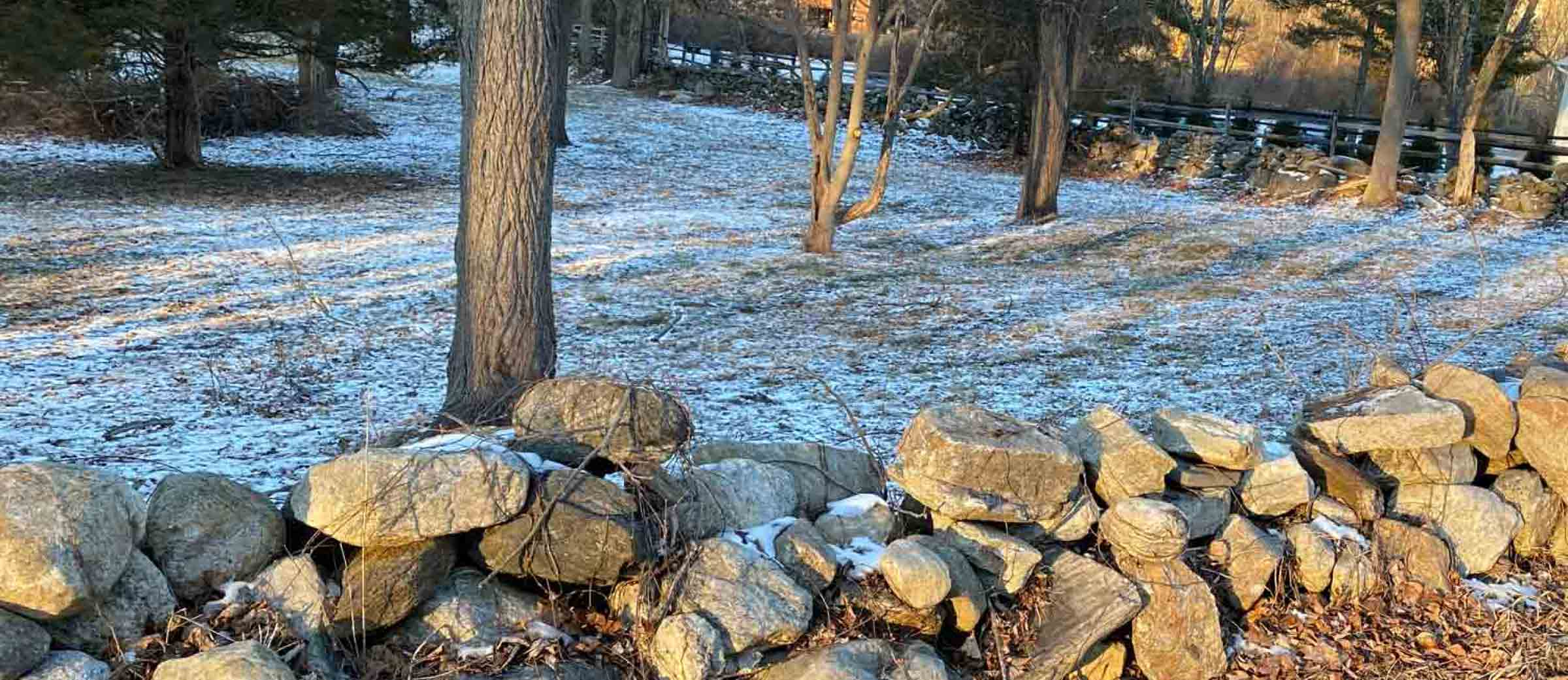 We specialize in expertly and affordably restoring dry stone walls